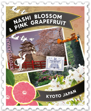NASHI BLOSSOM AND PINK GRAPEFRUIT
